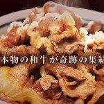 wa-gyu2