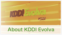 kddi-evolva