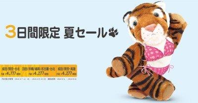 tiger-air