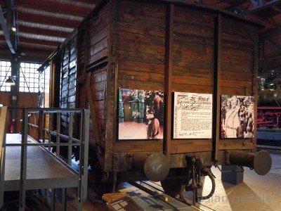 berlin-museum312