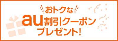 c16_025au_coupon_title